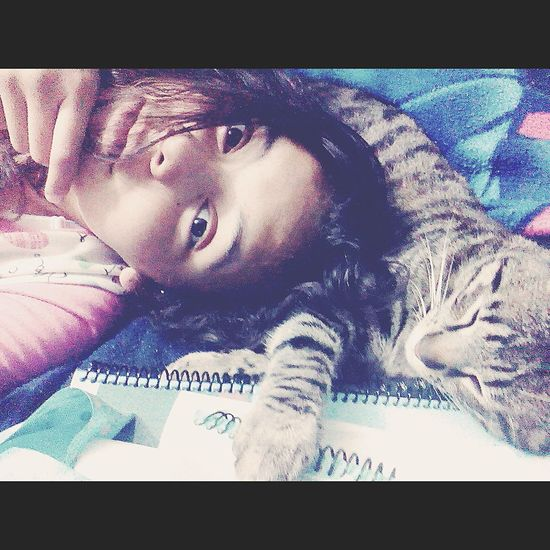 Felino Cat♡ Gato Sleeping Selfiewithcat Selfie Love ♥ 💚💗💚💗❤💗💚