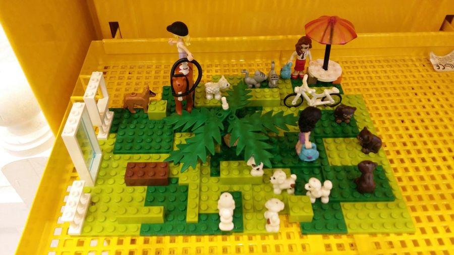 LEGO Pet Shop  Fun Play Quality Time Family Time Big Boys Toys