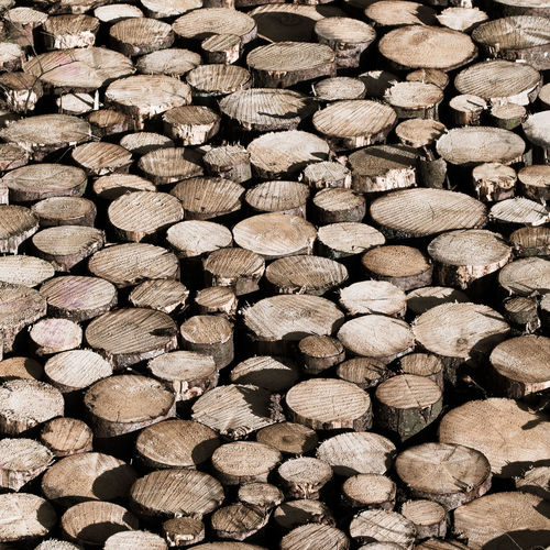 Abundance Backgrounds Deforestation Environmental Issues Firewood Forest Fuel And Power Generation Full Frame Hoffi99 Large Group Of Objects Log Lumber Industry No People Outdoors Pattern Stack Textured  Timber Tree Wood Wood - Material Wood Grain Woodpile