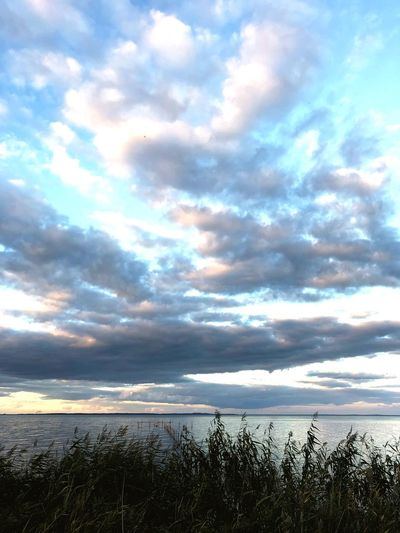 Sky Cloud - Sky Water Beauty In Nature Sea Scenics - Nature Tranquil Scene Tranquility Beach Nature Land No People Horizon Over Water Fence Day Horizon Boundary Outdoors Barrier