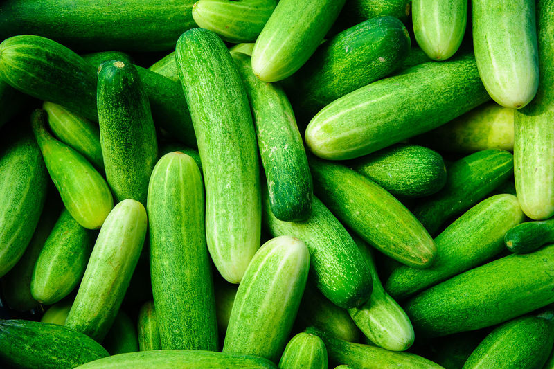 Fresh green cucumber collection outdoor on market., Design background Abundance Backgrounds Close-up Day Food Food And Drink Freshness Full Frame Green Color Healthy Eating Indoors  Large Group Of Objects No People Vegetable