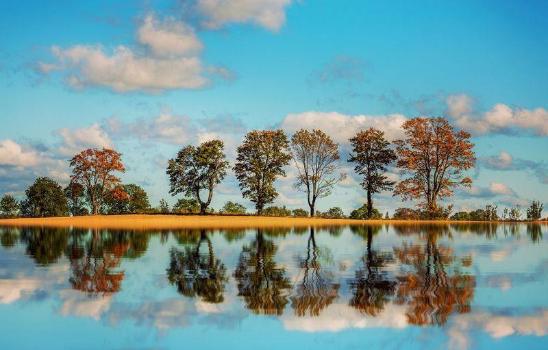 Autumn trees reflecting on lake against blue sky