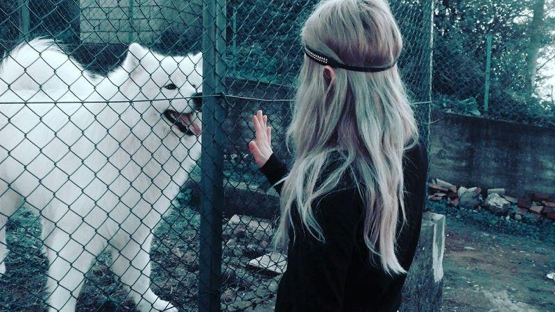 Whitedog Ermosopero Pretty♡ Hairstyle LoveNature Amarnaturaleza Naturaleza Loveanimals Loveanimals❤️ 💃💃💃💃