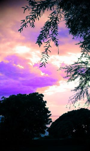Silhoutte Edit Nature Sky And Clouds