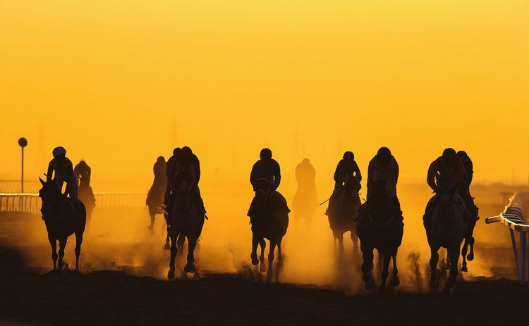 Horse racing at Sunset Horses Sunset Visit Oman Beautiful Sports Photography Market Bestsellers May 2016 Fine Art Photography