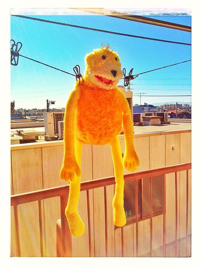 Flat Eric Yellow Color