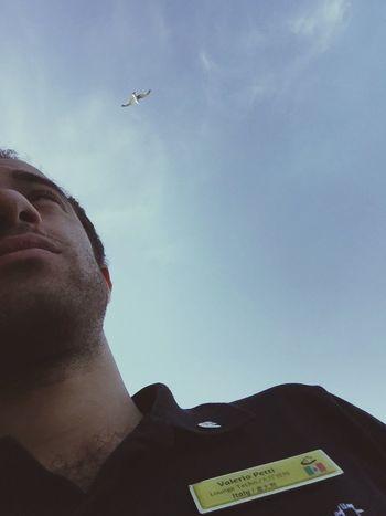 Flying High Randomshot Seaing  In The Sea