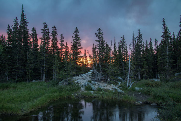 Be. Ready. Reflection Beauty In Nature Blazing Sunrise Forest Getting Up Early Landscape Sunrise