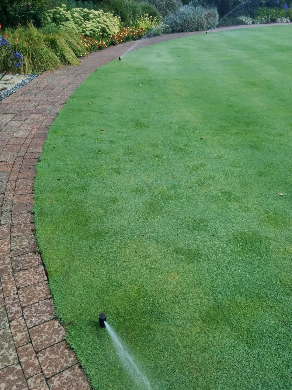 grass, green color, golf course, high angle view, golf, day, nature, outdoors, tree, no people, green - golf course, growth, landscape, scenics, sport, beauty in nature