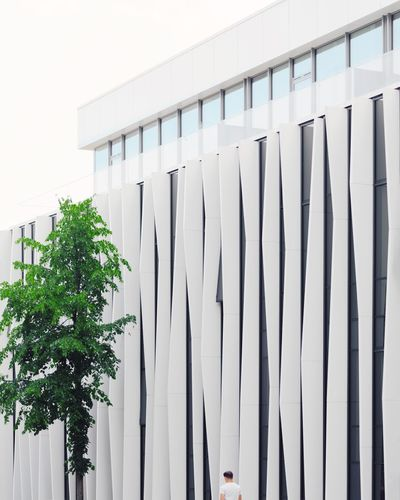 ⬜👤⬜︱camouflage Exterior Minimalist Architecture Minimal EyeEm Best Shots EyeEmNewHere Architecture_collection VSCO Hotel Windows Architectural Column Business Finance And Industry Architecture Building Exterior Built Structure Whitewashed Office Building Settlement