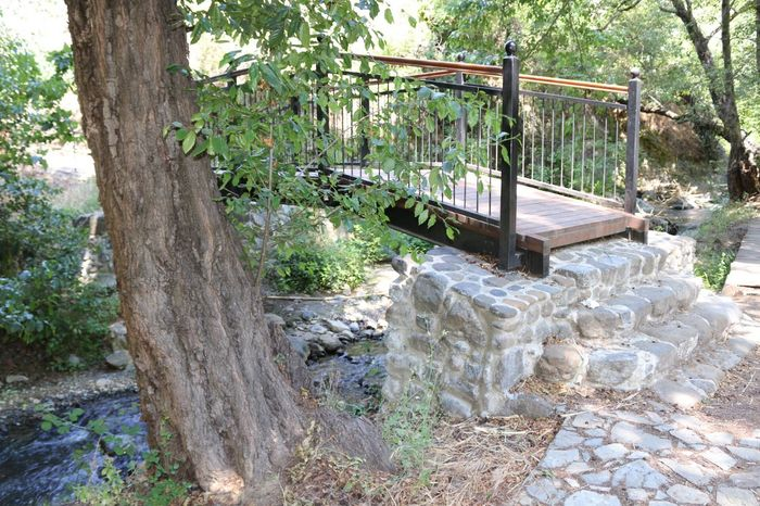 Small Bridge Rock Structure Tree Nature Bath Nature Kakopetria Cyprus No People Natural Beauty Nature_collection Nature Beauty Naturelovers Nature Photography Forest Forest Photography Forestwalk Forest Trees Forest Path Troodos Small River Small River In Forest Small River With Rocks Nature Lover Nature_perfection Forest View