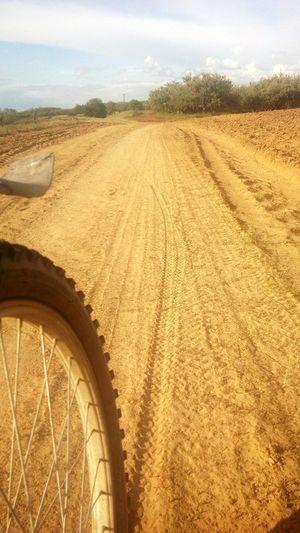 Summertime Beautiful Place ♥ Love Is Love ❤ Hot Day Sun Nice Day Future Bike Week Bike Is My Life. Bike Ride Bikelove Nevergiveup Never Stop Dreaming
