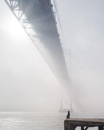 Fog City Bridge