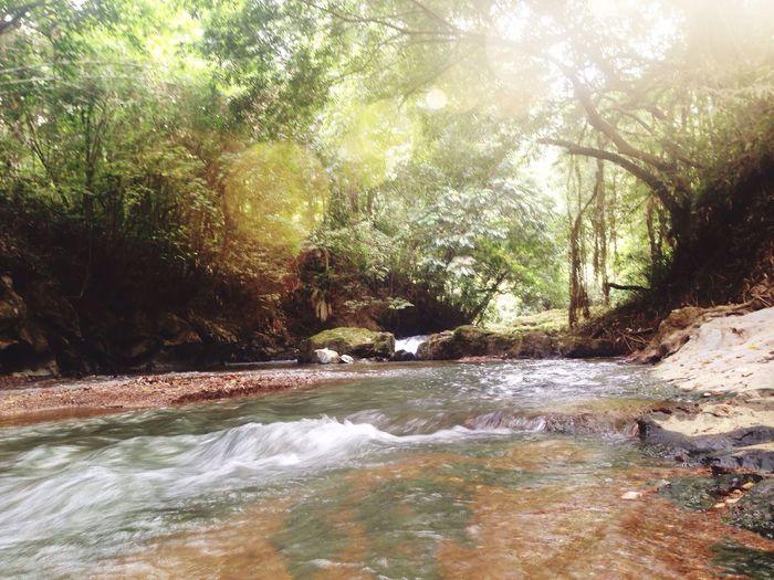 My Childhood Playground,Giam Waterfall.. Beauty In Nature