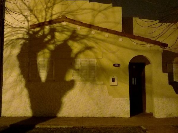 Night Nightphotography Shadows & Lights Tree Silhouette Argentina Shadow-art