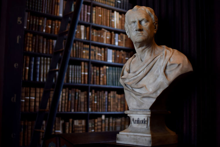 Greek Philosopher bust in Trinity College Library Ancient Greek Aristotle Democracy Philosophy Trinity World Heritage Architecture Art And Craft Book Bookshelf Bust  Bust  Craft Creativity Culture Indoors  Language Library Literature No People Publication Sculpture Shelf Statue