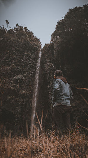 Rear view of man standing on field looking at waterfall