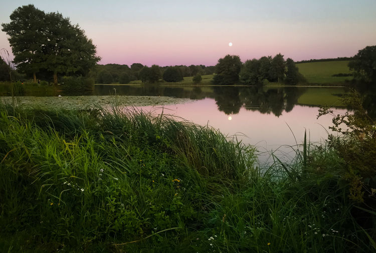 French landscape Beauty In Nature Grass Green Color Growth Idyllic Lake Nature No People Non-urban Scene Outdoors Plant Reflection Scenics - Nature Sky Sunset Tranquil Scene Tranquility Tree Water