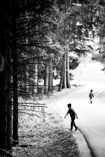 Two roads diverged in a wood // Trentino // Apr'17 Tree Real People Childhood Two People Boys Leisure Activity Nature Full Length Forest Walking Outdoors Togetherness Day Lifestyles Playing Vacations Streetphotography Reportage Blackandwhite Monochrome Woods Italy Trentino Alto Adige Predazzo The Street Photographer - 2017 EyeEm Awards