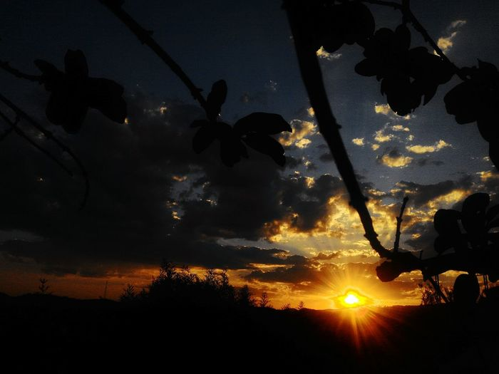 Outdoors No People Sky Night Nature Silhouette Sunset Astronomy Tranquility Day Nature Minas Gerais Brazil Black Green Dramatic Sky Afernoon Blue Yellow