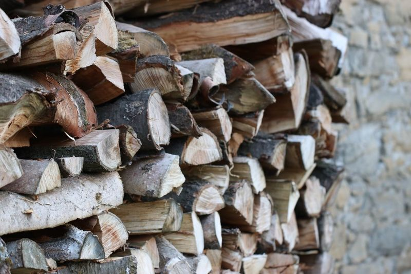Pile Of Wood Outdoor Photography Outdoor Simplebutperfect Simplebutbeautiful Feelingnature Home Forest Woodmaterial Wood Powerofnature Nature EyeEm Selects Stack Large Group Of Objects Log Timber Abundance No People Woodpile Day Outdoors Close-up