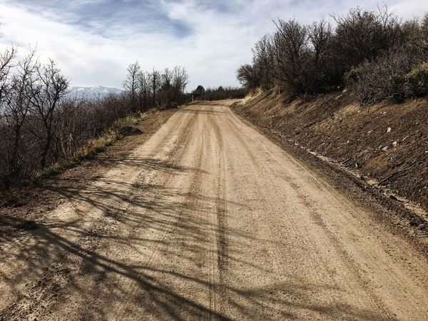 warm sun. getting a few miles in on this dirt road. works every time. ✨🙏🏼 Wasatch County Heber City Wasatch Back Sky Nature Cloud - Sky Land Landscape Environment Plant