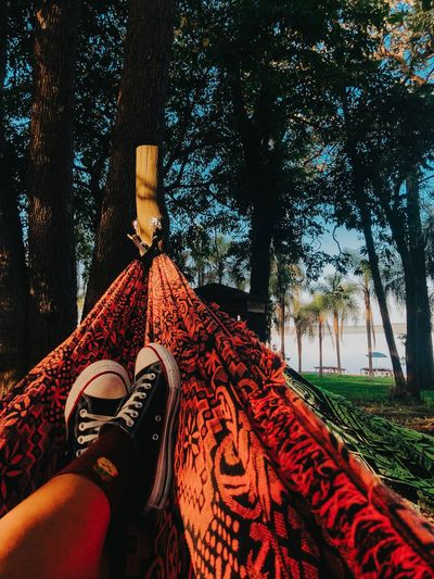 Friday Nature Trip Tree Shoes Allstar Human Body Part Body Part One Person Personal Perspective Low Section Human Leg Real People Shoe Plant Day Nature