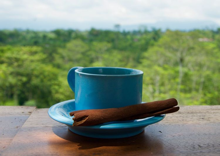 Close-up of blue coffee cup and cinnamon stick in saucer