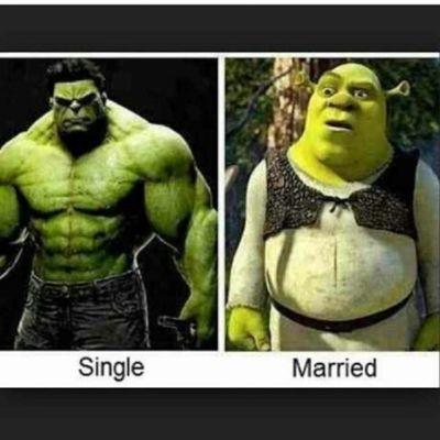 Hahahaha. @bradzillaahh Funny IncredibleHulk Shrek LOL