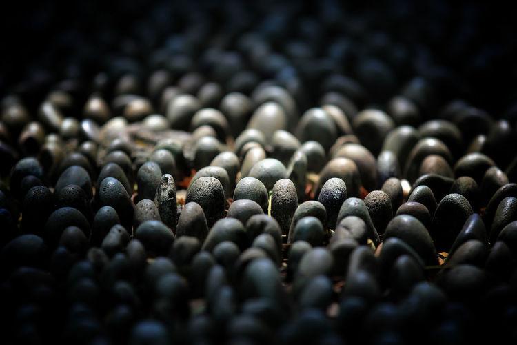 Full frame shot of black coffee beans