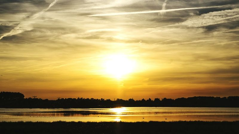 Our beautiful national park in the Netherlands. There are lots of special birds to spot. @theBiesbosch. Thenetherlands Biesbosch Nationalpark Sunset Sunsetphoto Nature Naturephoto Gettyimages Ig_sunsetshots Cloudscape Landscape Birdwatching Birds Wilderness View Thesun Eyeemsunset Sunsetsky Springtime Nightshooter Amazingsky Naturephotos Beauty In Nature