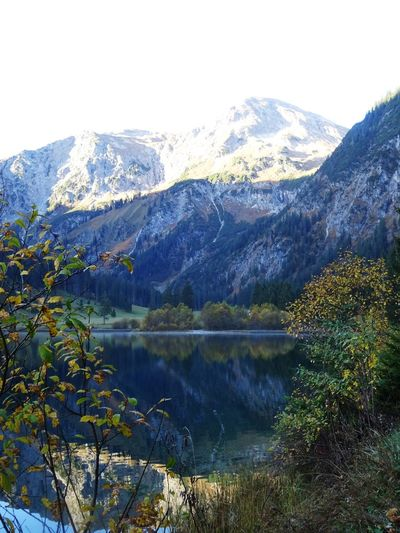 Mountain Beauty