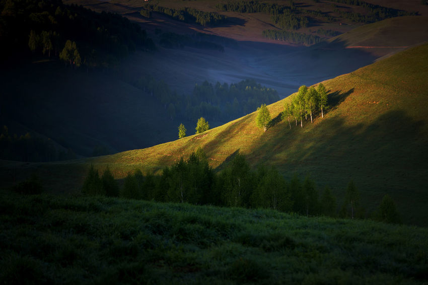 Beautifu summer sunrise in Apuseni Mountains Apuseni Aries Colors Grass Green Color Hills Light Lights Meal Nature Romania Textured  Transylvania Travel Aries Valley Countryside Forest Landscape Mountain Mountains Ruralchurchday Summer Sunrise Transylvania💕 Village
