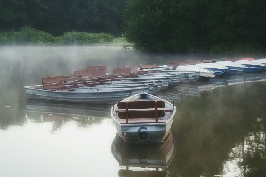 foggy morning Nautical Vessel Reflection Lake Floating On Water Tranquility Landscape Water No People Tree Outdoors My Point Of View Scenics ın A Row Summer Reflection Photography Nature Is Art Art Is Everywhere