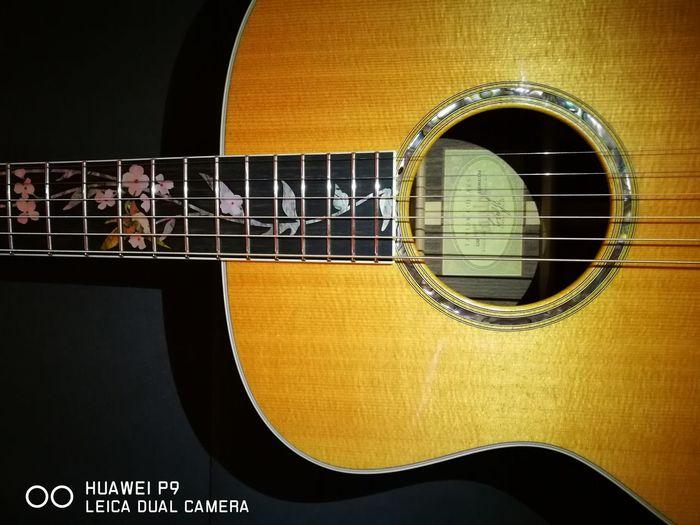 Taylor Guitar GS8