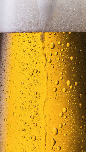 Gold fresh beer with dew drops Froth Alcohol Backgrounds Beer - Alcohol Beer Glass Bubble Close-up Cold Drink Cold Temperature Condensation Dew Drops Drink Drop Frothy Drink Full Frame Gold Colored Lager Liquid Pint Glass Refreshment Studio Shot Textured  Textured Effect Wet Yellow