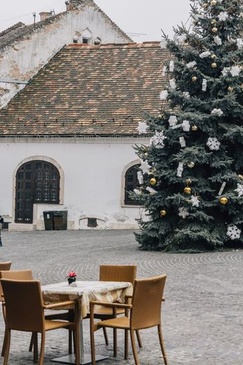 Christmas Tree Christmas Decorations Christmas Mood Tourist Destination Hungarian Hungary Outdoors Szentendre Christmastime Terrace