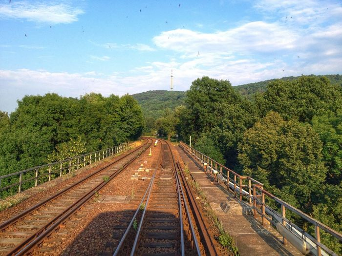 High angle view of railroad tracks amidst trees on sunny day