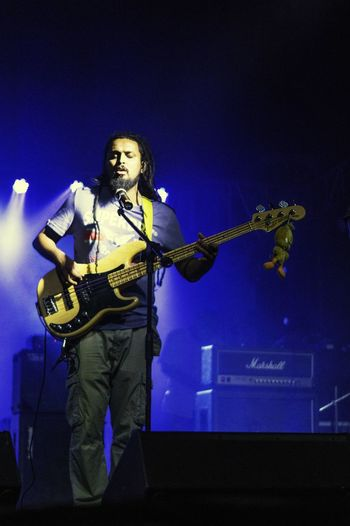Hit that Bass 2 Lights Harman Live India Bass Guitar Rock N Roll Concert Photography