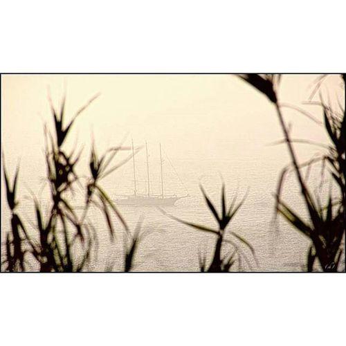 Seascape Escape Sea Ocean Mermediterranee Atlantique Atlanticocean Mediterraneansea Sunset Capspartel Tanger  Maroc Morocco Boat Bateau Cruise Croisiere DetroitDeGibraltar Gibraltar Coucherdesoleil Mer Trip Roadtrip Voyage Travel
