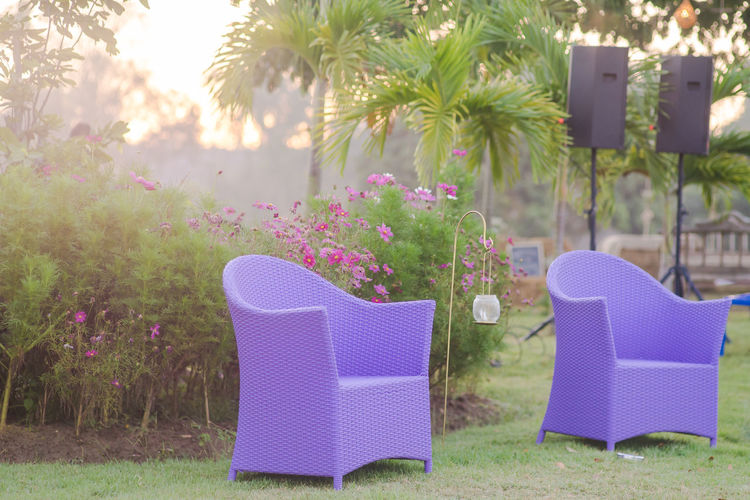 Absence Armchair Beauty In Nature Chair Day Empty Flower Flowering Plant Focus On Foreground Front Or Back Yard Grass Growth Nature No People Outdoors Pink Color Plant Purple Seat Sunlight Tree