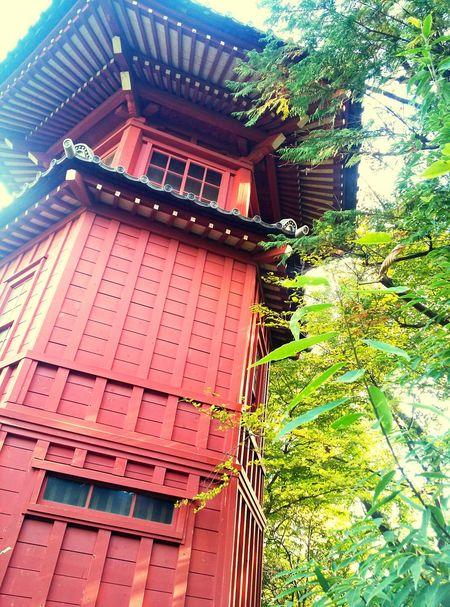 哲学堂公園 Philosophy Japan Tokyo