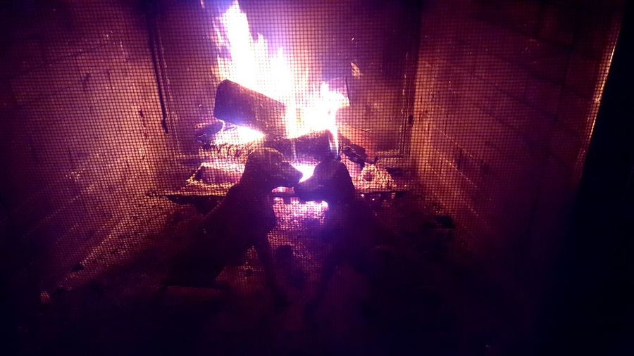 Warm crackling fireplace with iron fire dogs Taking Photos Fire Fireplace Iron Dogs Crackling Indoors  Warm Old-fashioned Blazing Wood Burning