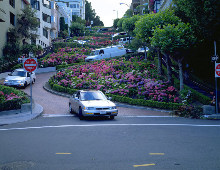 San Francisco cityscape, coastal scenery and beautiful City San Francisco Traffic United States Western America Architecture Building Exterior Built Structure Car City Day Land Vehicle Landscape Lane Mode Of Transport No People Outdoors Peaceful Road Street Transportation Tree