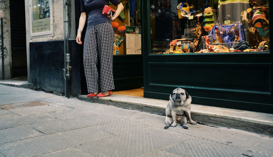 Woman with dog on floor