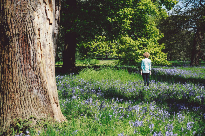 Beauty In Nature Blonde Blubells Blue Jeans Bluebell Casual Clothing Curly Hair Field Flower Girl Grass Green Color Growth Leisure Activity Lifestyles Nature Nature Park Plant Shirt Spring Tranquil Scene Tranquility Tree Tree Trunk Postcode Postcards Summer Exploratorium