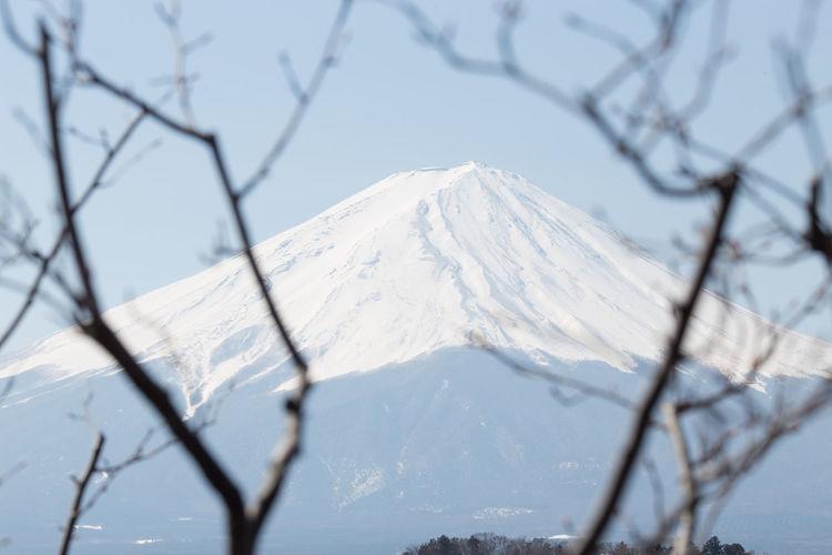 Fuji Snow