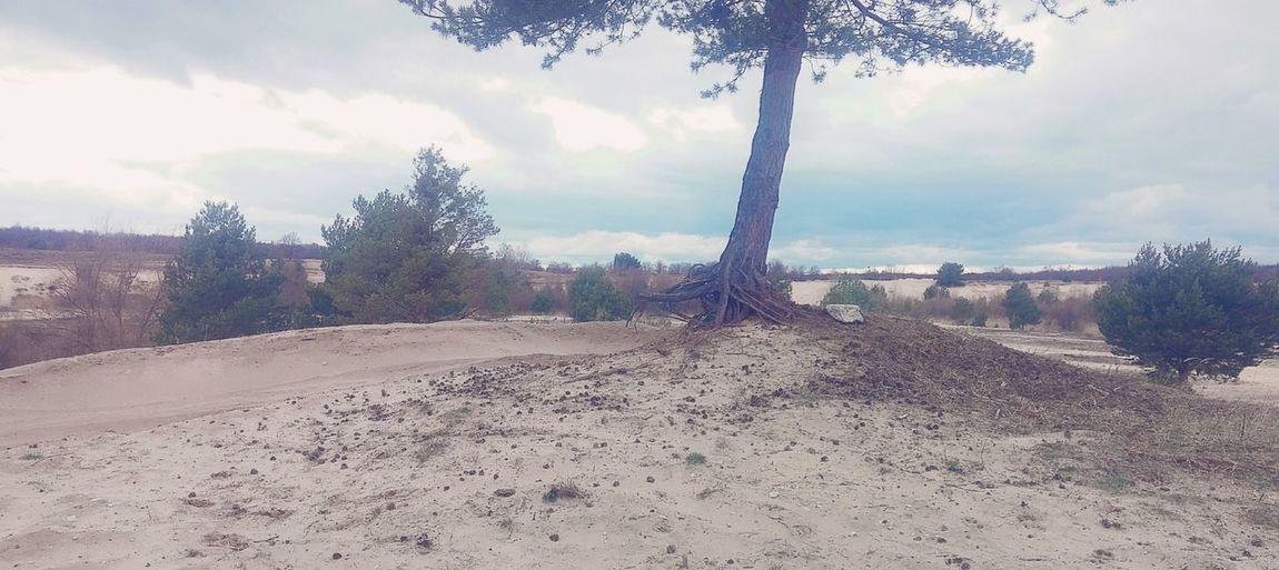 Nature Sand Baum Relaxing