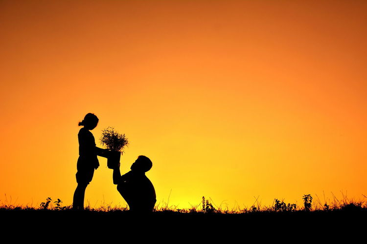 Boy Giving Girl A Potted Plant At Sunset