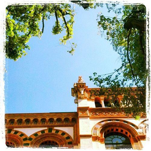 Museo di storia naturale. Ai giardini Indro Montanelli di Milano. Manifestazione inopportuna dei taxisti al Wireditalia next fest.